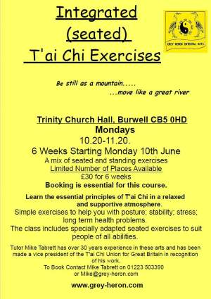 Tai Chi Classes Poster - Click for larger image